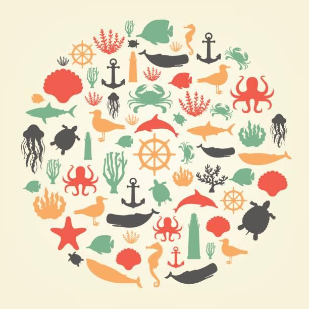 illustrazioni stock, clip art, cartoni animati e icone di tendenza di sea icons and symbols set. sea animals. nautical design elements. vector - immerse in the stars