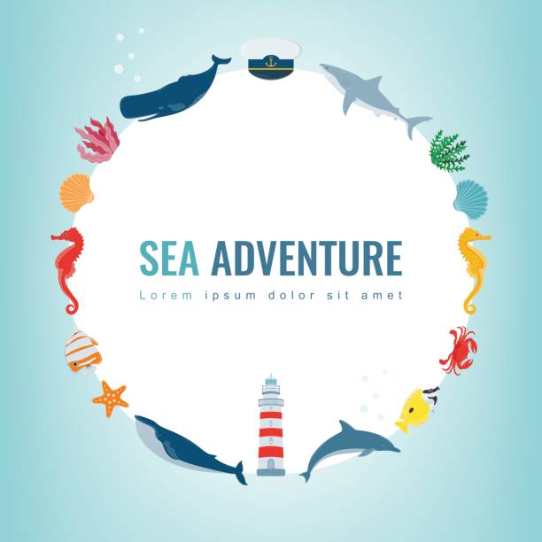 Sea icons and symbols set. Sea animals. Nautical design elements. Vector vector art illustration