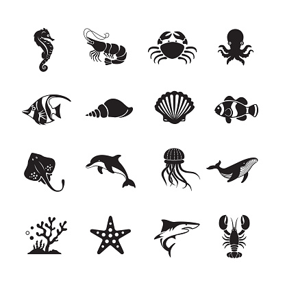 Sea Life and Ocean animals icon