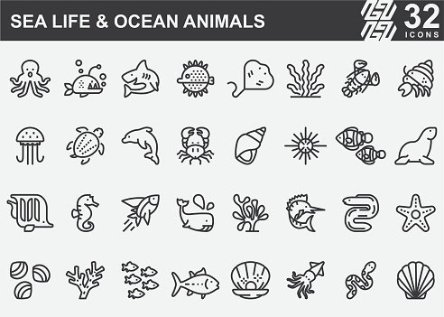 Sea Life and Ocean animals Line Icons