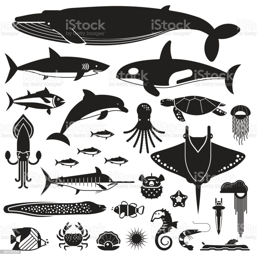 Sea Life and Underwater Animals Icons vector art illustration