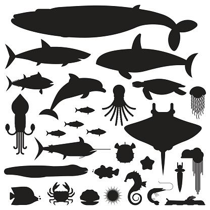 Sea Life and Underwater Animals Icons