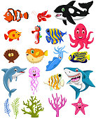 vector illustration of sea life cartoon collection