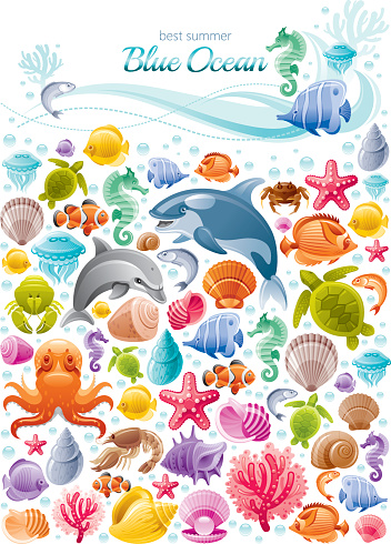 Sea life colorful poster