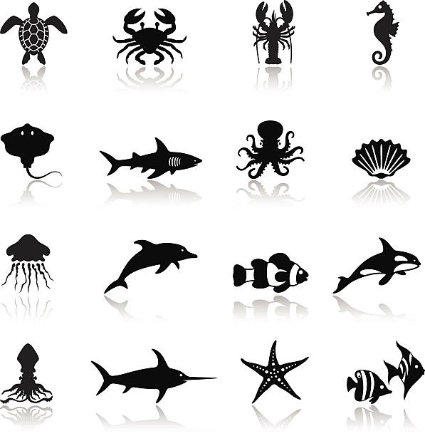 Sea Life Icon Set Sea life icon set. High Resolution JPG,CS5 AI and Illustrator EPS 8 included. Each element is named,grouped and layered separately. sea horse stock illustrations