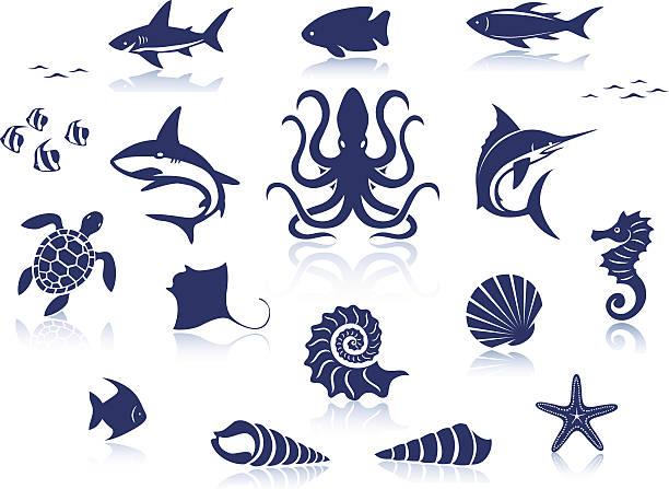 sea life icon set - marine life stock illustrations