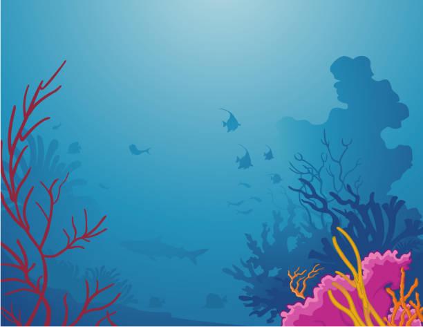 Sea life / La vie sous la mer Bright color corals and silhouette of tropical fishes. Coraux aux couleurs vives et silhouettes de poissons sous la mer tropicale. undersea stock illustrations