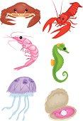 Set of 6 Sea Life Vector Illustrations.