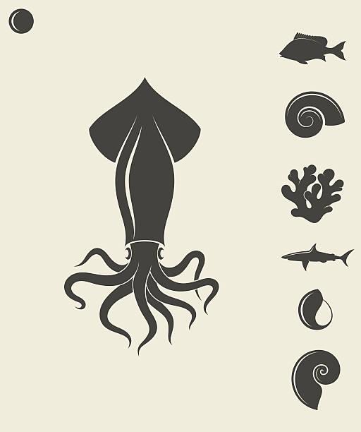 sea life. set - kalamar stock-grafiken, -clipart, -cartoons und -symbole