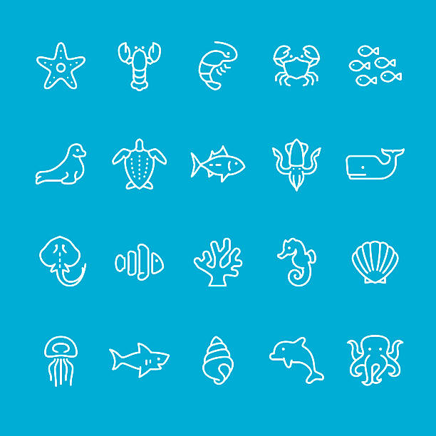 stockillustraties, clipart, cartoons en iconen met sea life theme icons - leatherback