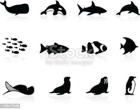 Set of simple icons for sea marine life. Includes a JPG, and a transparent PNG.