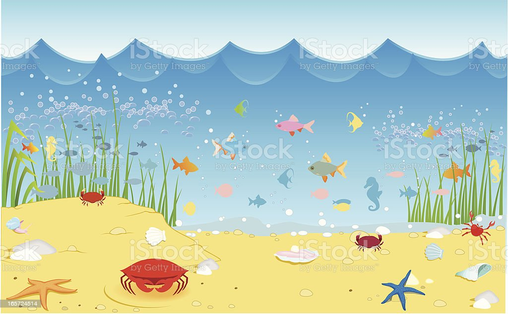 sea life royalty-free sea life stock vector art & more images of animal