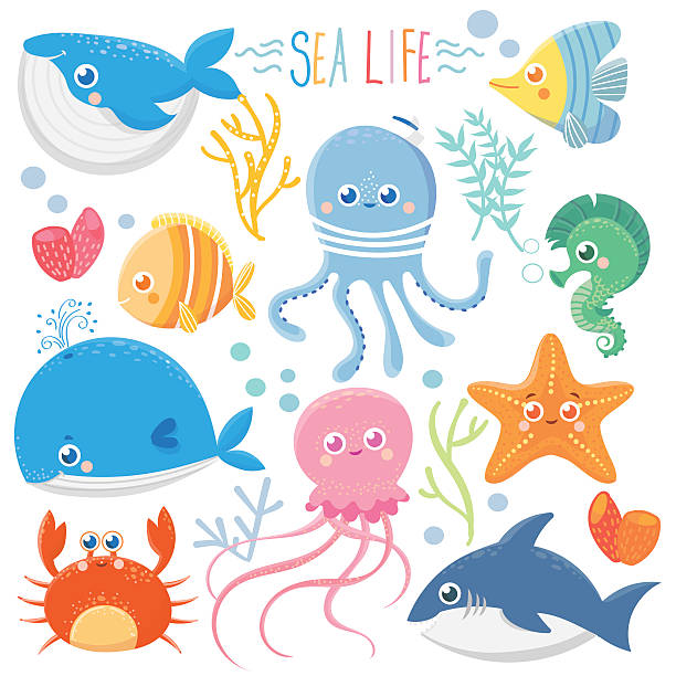 Sea life Sea life. Set with funny sea animals. Vector collection marine life stock illustrations