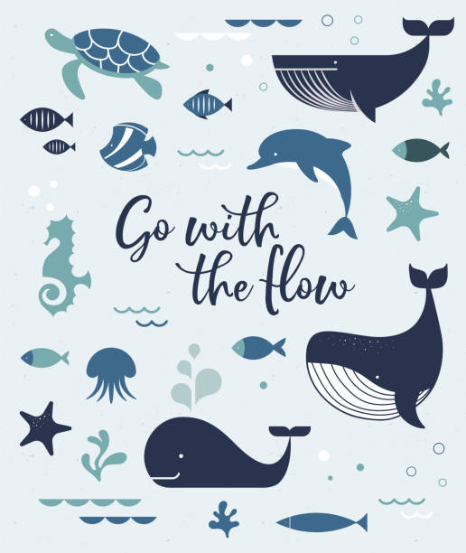 Sea life, whales, dolphins icons and illustrations, poster design Sea life, whales, dolphins illustrations, banner and poster design beluga whale stock illustrations