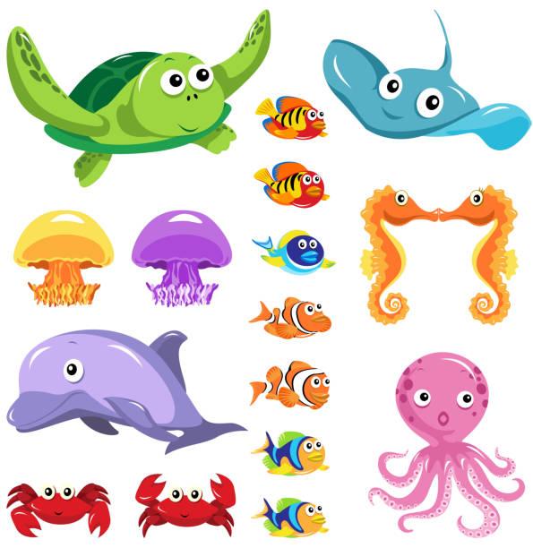 sea lifes graphic elements - marine life stock illustrations