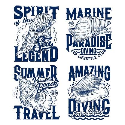 Sea mollusks and snails seashells t-shirt prints