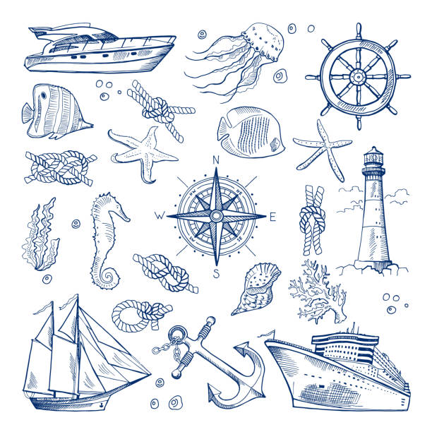 Sea or ocean underwater life with different animals and marine objects. Vector pictures in hand drawn style vector art illustration