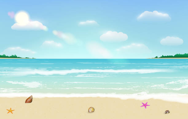 sea sand beach summer tropical background vector vector art illustration