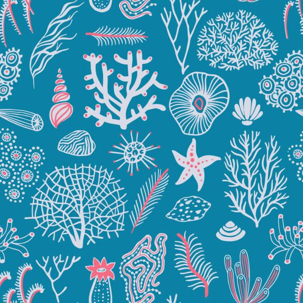 bildbanksillustrationer, clip art samt tecknat material och ikoner med sea sömlöst mönster med snäckskal, koraller, alg och sjöstjärnor. marin bakgrund. - ryssland