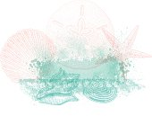 Sea Shell Background Design