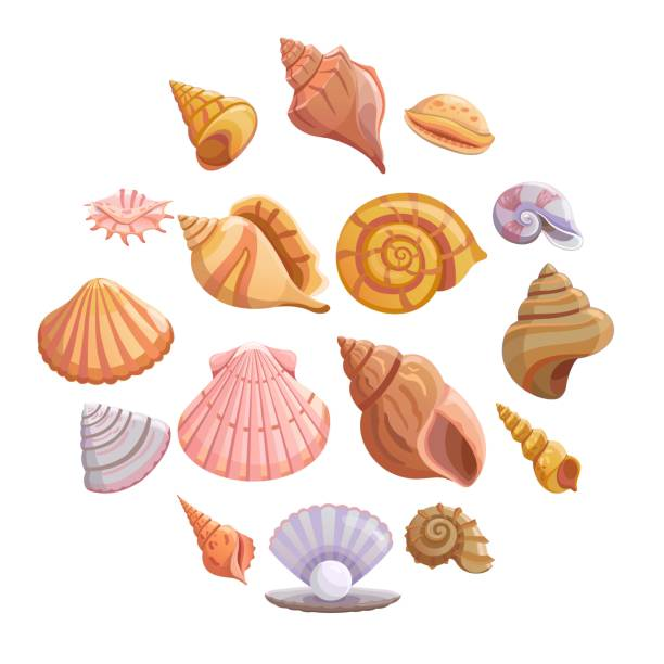 Sea shell beach icons set, cartoon style Sea shell beach icons set. Cartoon illustration of 16 Sea shell beach tropical underwater vector icons for web animal shell stock illustrations