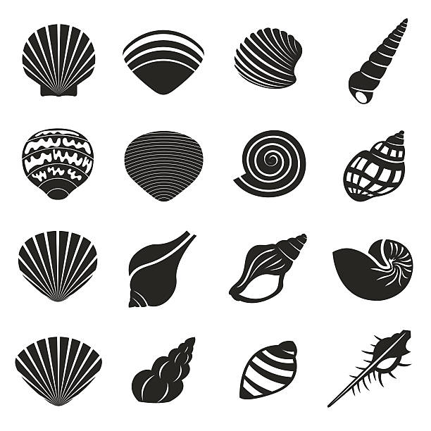 sea shell flat mono icons set - scallop stock illustrations, clip art, cartoons, & icons