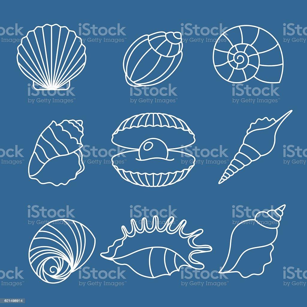 Sea shell outline icons on blue sea shell outline icons on blue – cliparts vectoriels et plus d'images de beauté libre de droits