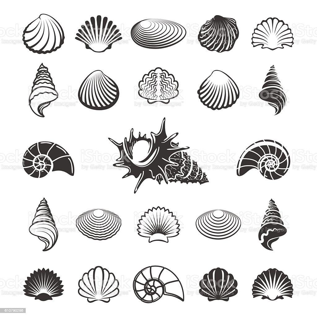 Sea shell silhouettes vector art illustration
