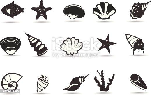 A set of royalty-free sea shell and sea life symbols.