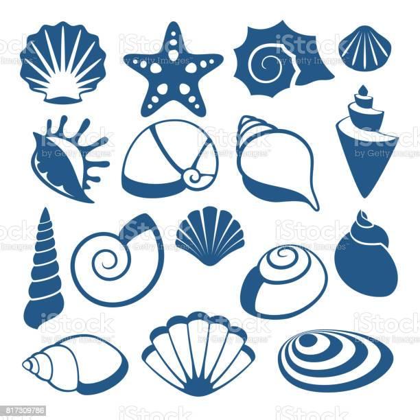 Sea Shell Vector Silhouet Pictogrammen Stockvectorkunst en meer beelden van Aquarium