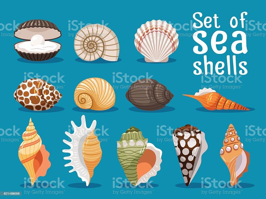 Sea shells flat icons set Lizenzfreies sea shells flat icons set stock vektor art und mehr bilder von blau