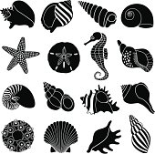 Vector icons of various sea shells and sea creatures.