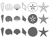 Collection of black and white sea shell outlines and silhouettes on a white background.