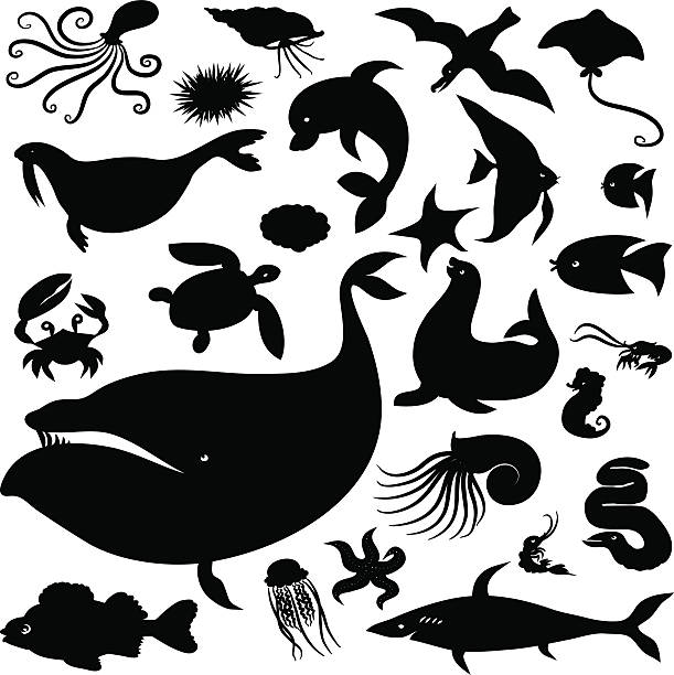 海のシルエットセット - 水族館点のイラスト素材/クリップアート素材/マンガ素材/アイコン素材