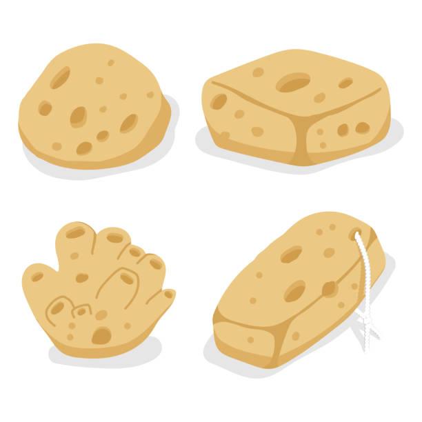 ilustrações de stock, clip art, desenhos animados e ícones de sea sponges vector cartoon set isolated on a white background. - esponja