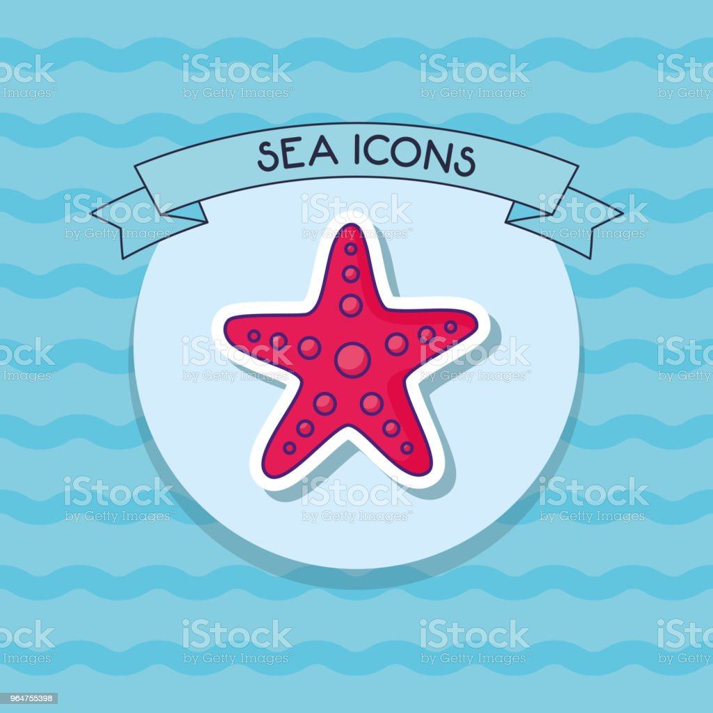 sea star icon royalty-free sea star icon stock vector art & more images of animal shell