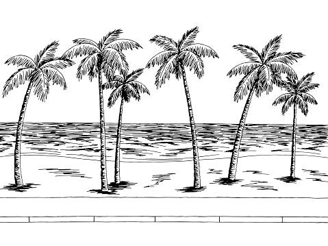 Sea street road graphic palm tree black white landscape sketch illustration vector