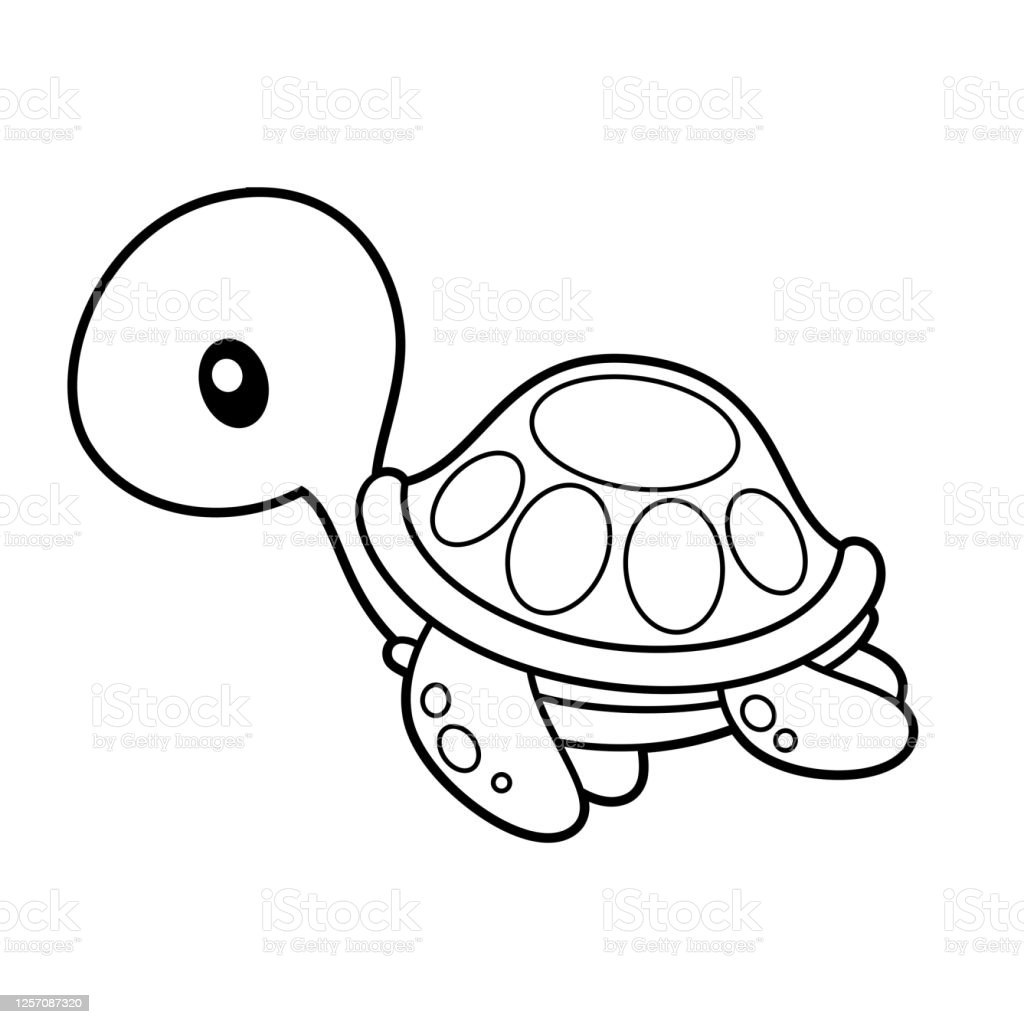 Sea Turtle Coloring Page Vector Illustration On White Stock Illustration Download Image Now Istock