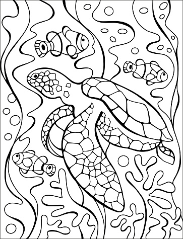 Sea Turtle, Coral reef and seashells coloring page. Original coloring underwater world. Summer fun. Black and white graphic T shirt print. Sketch of ornaments for creativity of children and adults. EPS 8.