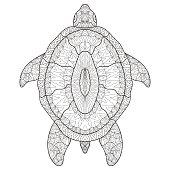 Sea turtle ethnic illustration