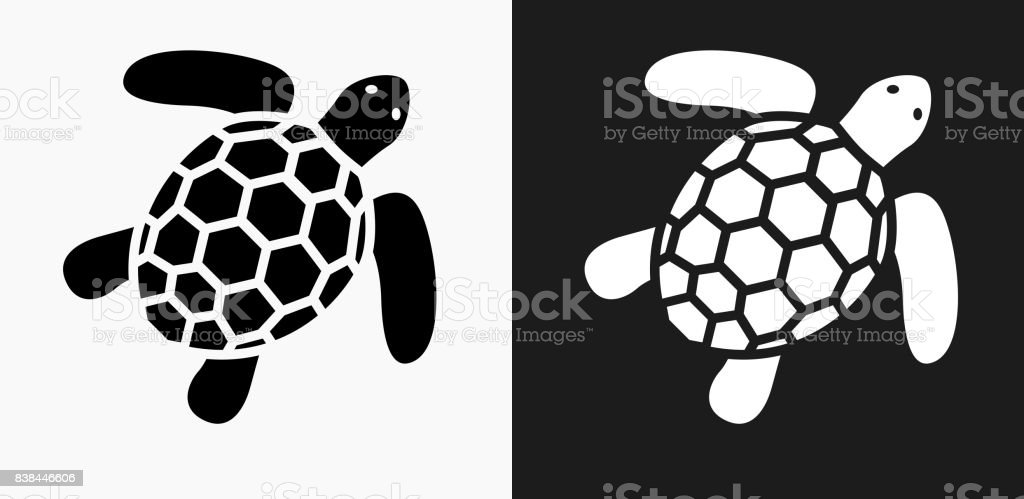 Sea Turtle Icon on Black and White Vector Backgrounds vector art illustration