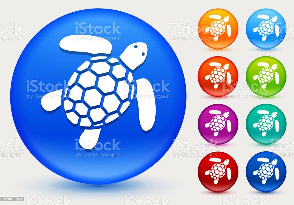 Ilustración de Icono De Tortuga En Círculo Brillante Color Botones y ...