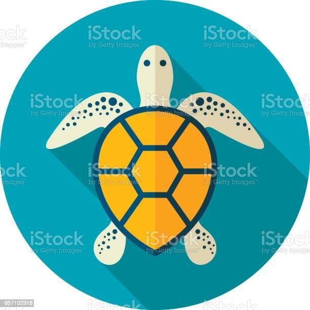 Sea turtle icon summer vacation vector id657102918?b=1&k=6&m=657102918&s=612x612&h=zft9j71a57f 0bvvtdbglx1gbtjacoblvuop cq1g3e=