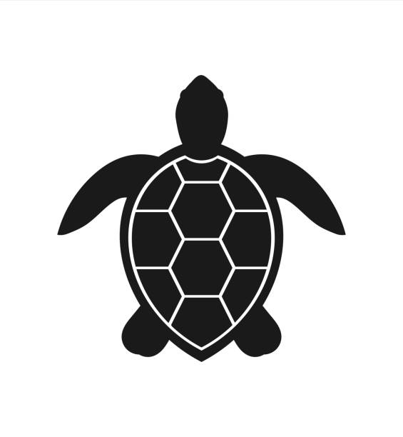 illustrazioni stock, clip art, cartoni animati e icone di tendenza di sea turtle icon - tartaruga marina