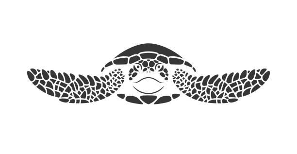 Sea turtle logo. Isolated turtle on white background. Reptile EPS 10. Vector illustration turtle stock illustrations