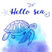 Vector hand drawn sea turtle on a blue watercolor background. Hello sea lettering.