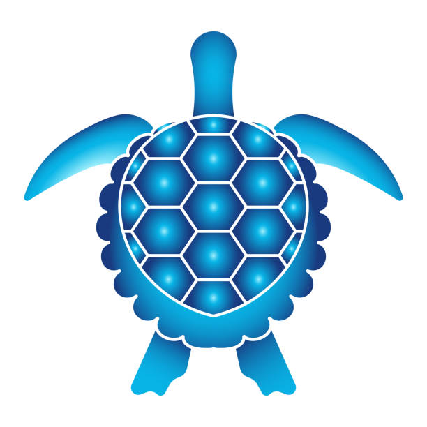 stockillustraties, clipart, cartoons en iconen met zeeschildpad of zeeschildpad top view flat pictogram voor apps en websites - leatherback