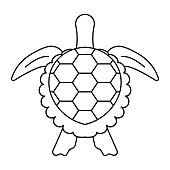 sea turtle or marine turtle top view flat icon for apps and websites