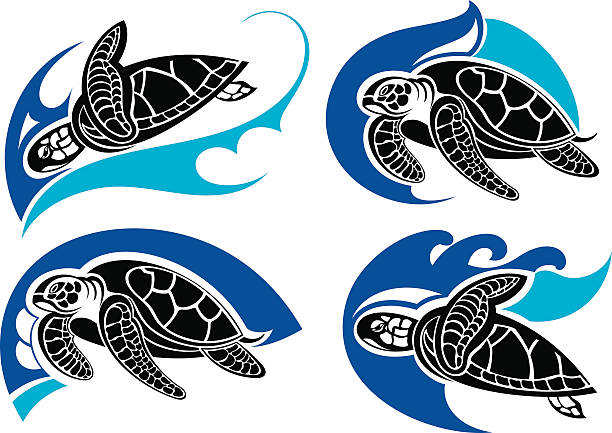 Royalty free sea turtle clip art vector images illustrations istock sea turtle mmer symbols vector art illustration voltagebd Choice Image