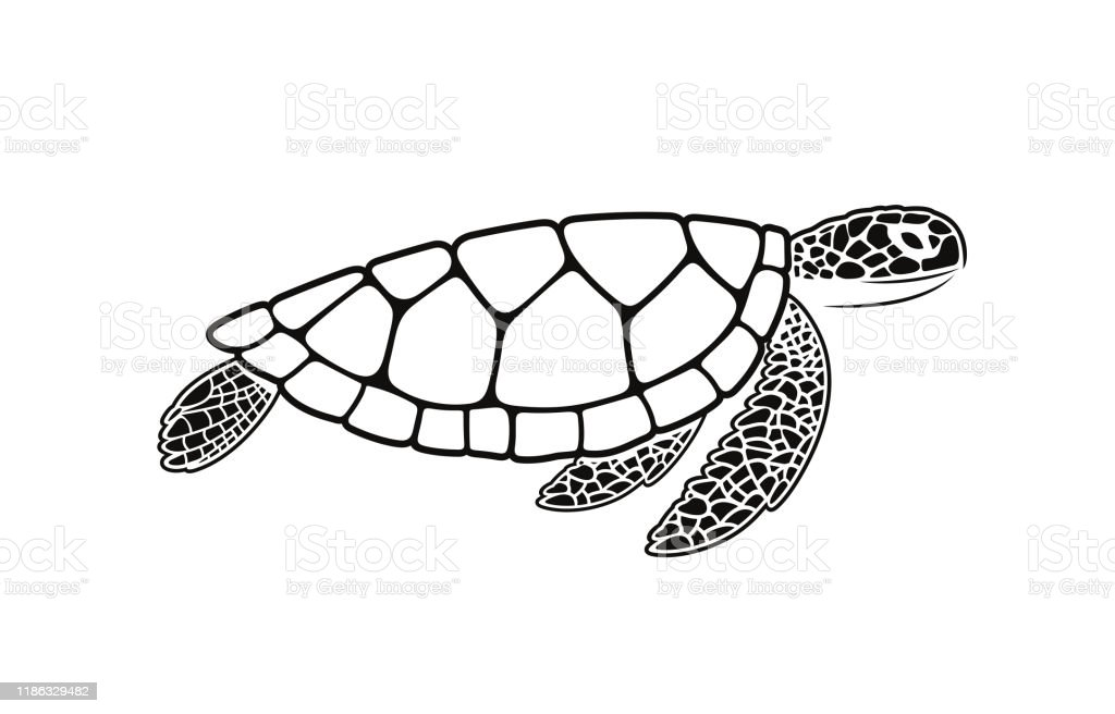 Sea Turtle Symbol Isolated Turtle On White Background Reptile Stock Illustration Download Image Now Istock